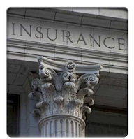 visitor insurance providers